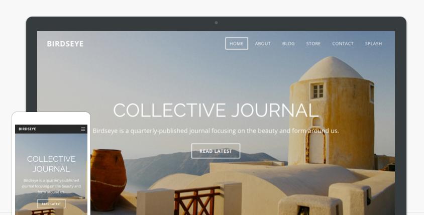 Birdseye-website-theme-on-desktop-and-phone